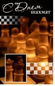 Международный день шахмат 023