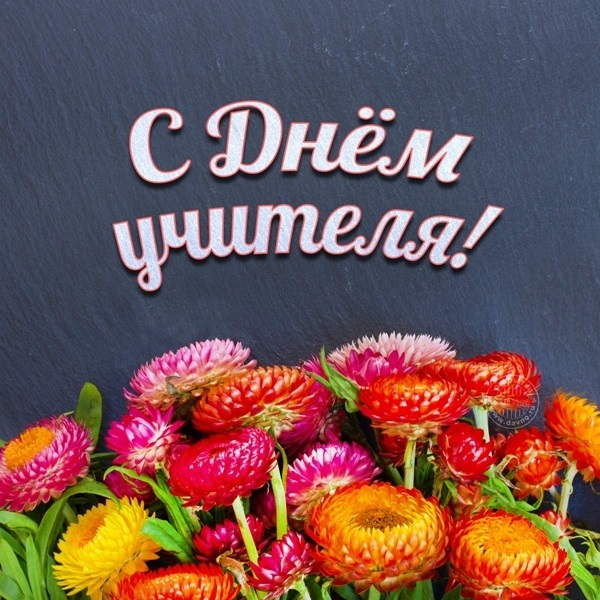 Милые картинки поздравления на день учителя009