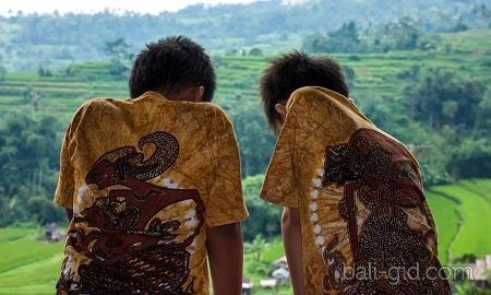 Национальный день здоровья (Индонезия) 013