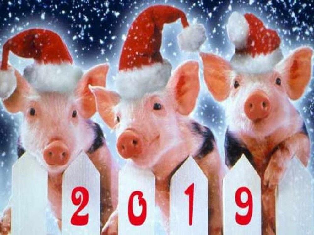 Новый год по китайскому календарю 007
