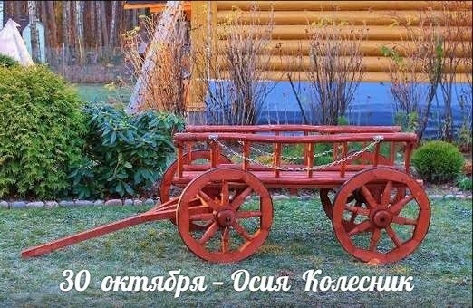 Осия Колесник 004