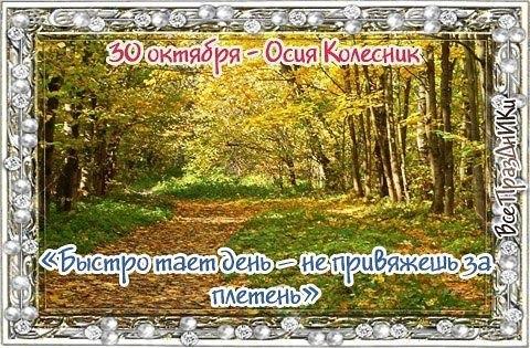Осия Колесник 009