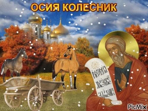 Осия Колесник 011