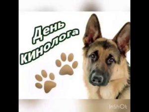 Открытки на День кинолога (РФ) 019