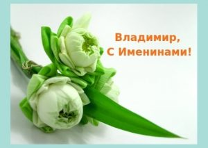Открытки на именины Владимира 017
