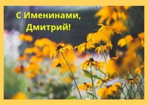 Открытки на именины Дмитрия 021