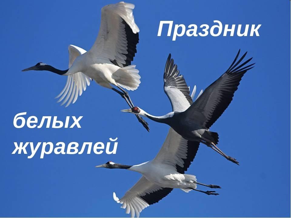 Праздник Белых Журавлей 016