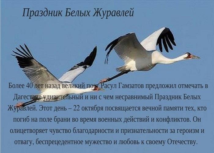 Праздник Белых Журавлей 020