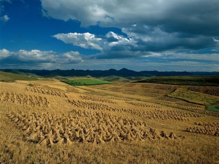 Праздник окончания уборки урожая (Самайн) в Ирландии 019