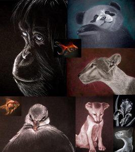 Рисунок на черном фоне пастелью 020