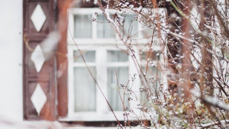 Сергий Зимний 011