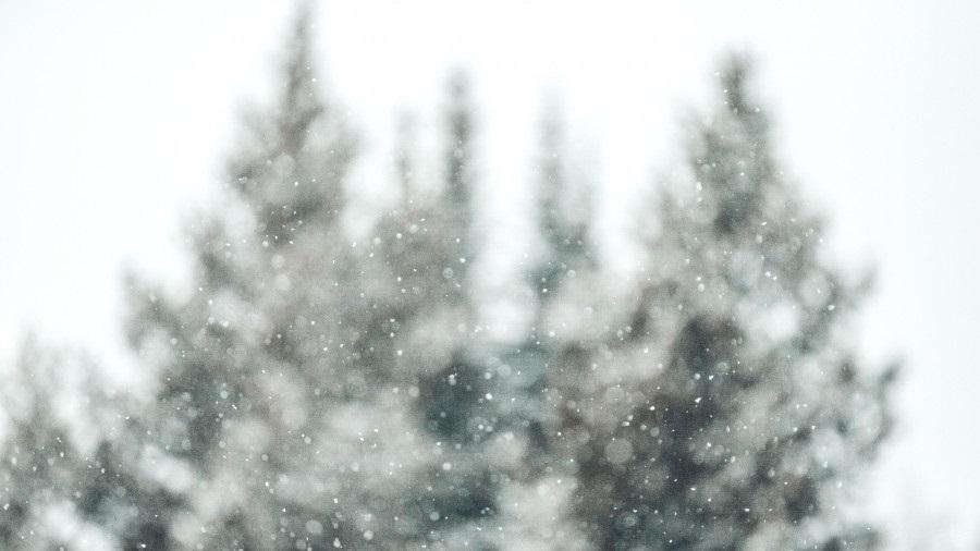 Сергий Зимний 012