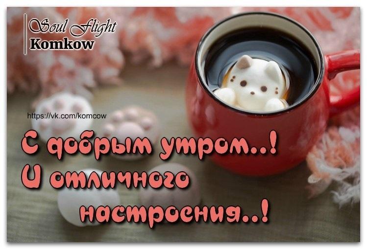 картинки с добрым и хорошим позитивным утром буду