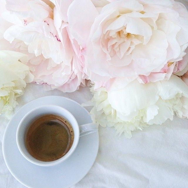 Утро нежность кофе картинки цветы017