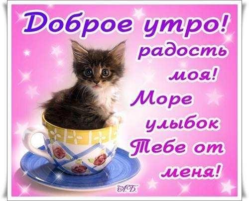 Фото доброе утро девочка моя009