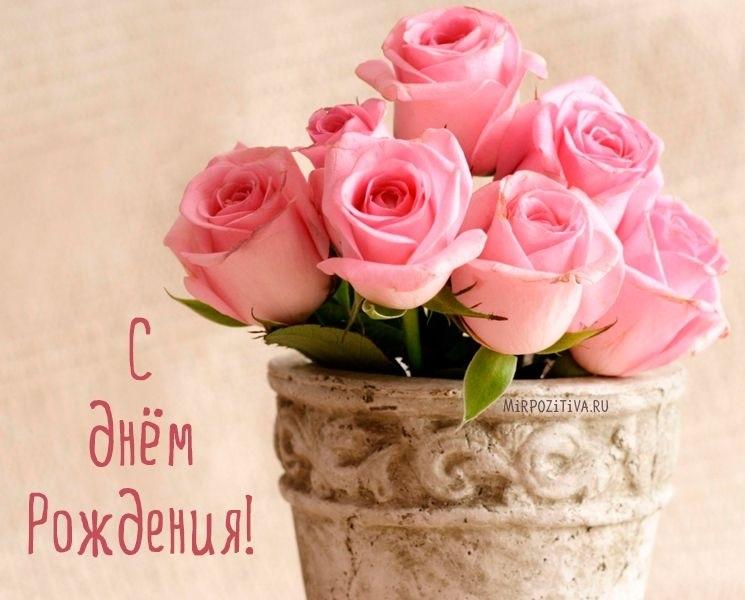 Цветы розы с днем рождения фото010