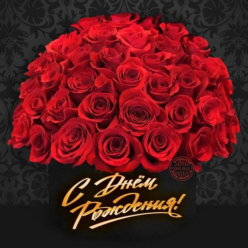Цветы розы с днем рождения фото013