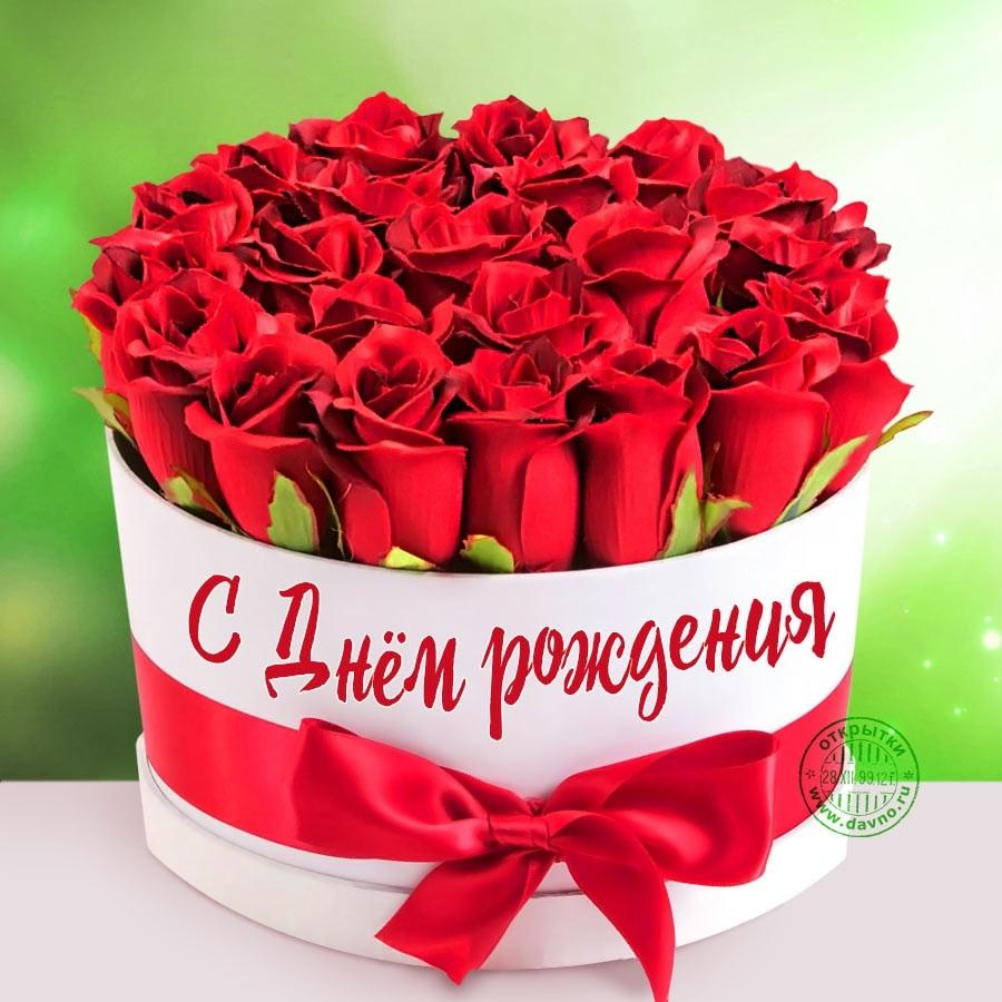 Цветы розы фото с днем рождения002