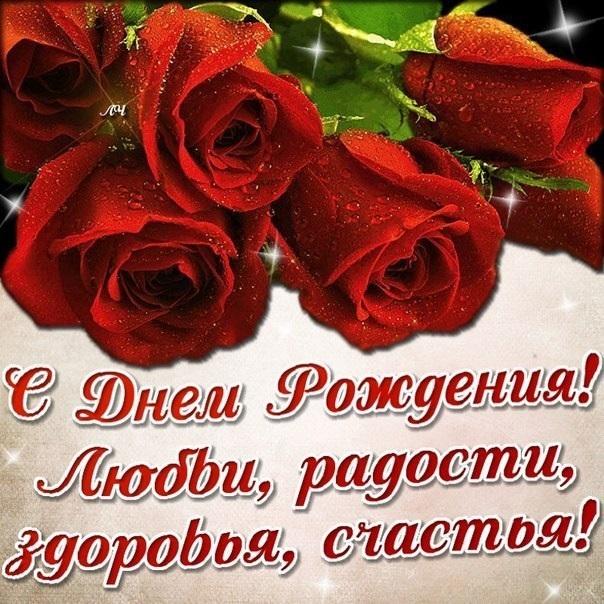 Цветы розы фото с днем рождения008