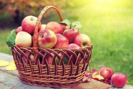 Яблочный спас 019