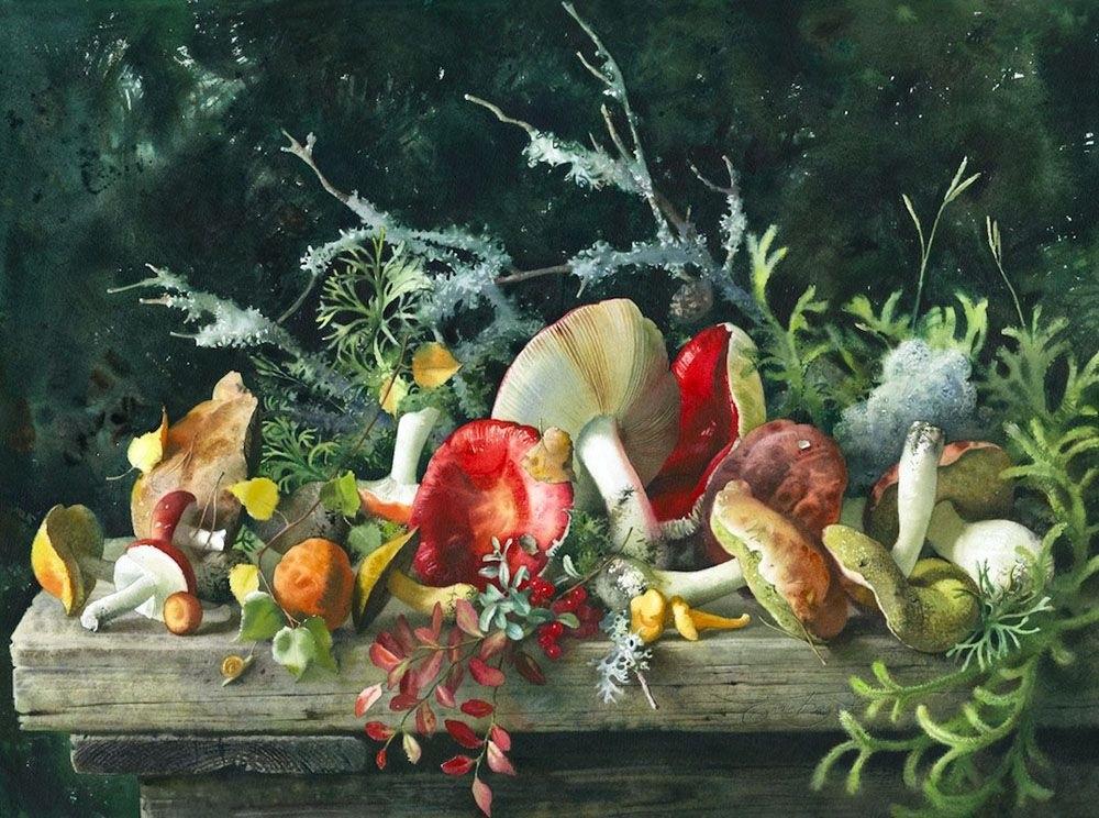 акварель натюрморт с грибами 020