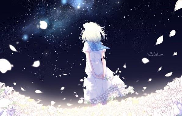 аниме арты звездное небо 005