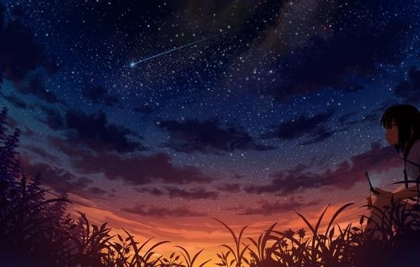 аниме арты звездное небо 009