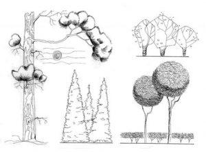 антураж в архитектурной графике 016