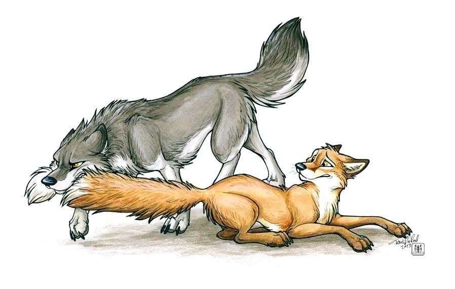 Картинки фурри лиса и волк
