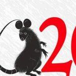 Год крысы через 8 дней — подборка