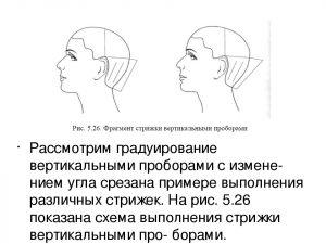 для начинающих парикмахеров схемы стрижек 024