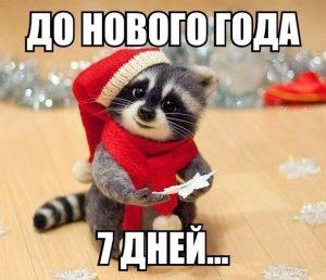 до нового года осталось 7 дней 018