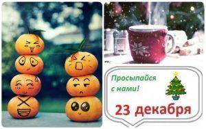 до нового года осталось 8 дней 017