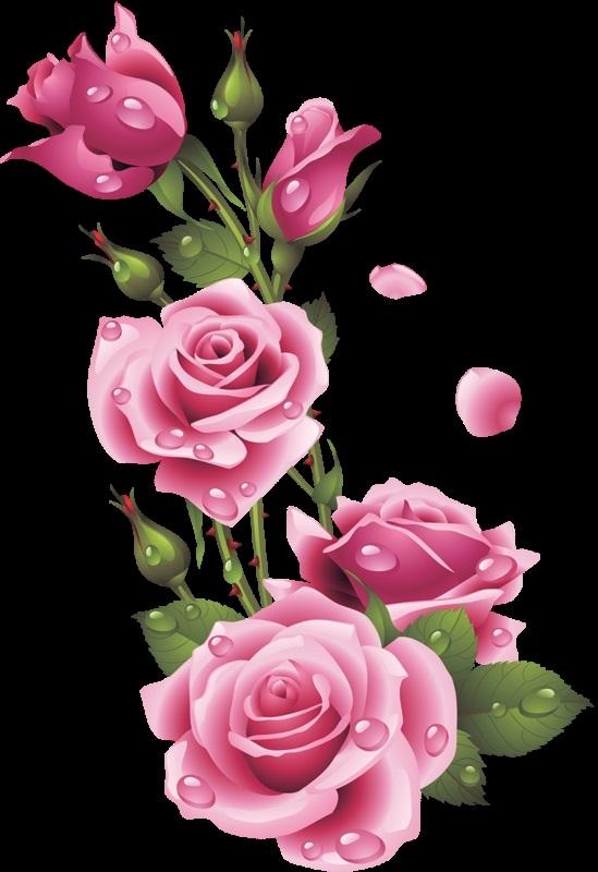 живопись цветы на белом фоне 004