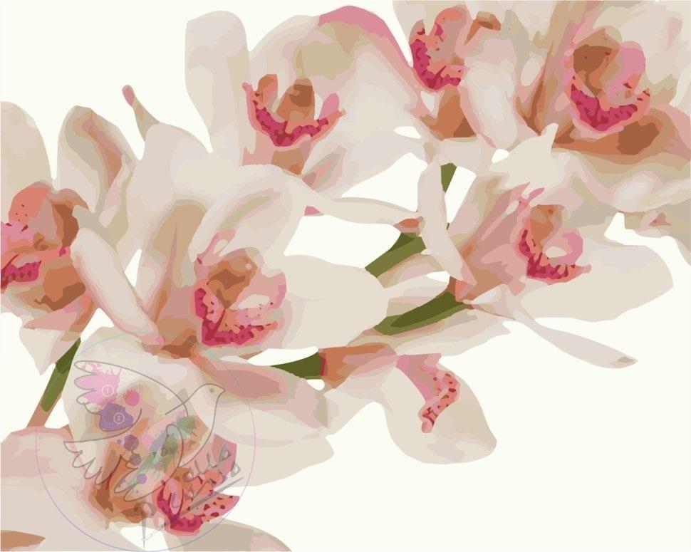 живопись цветы на белом фоне 005