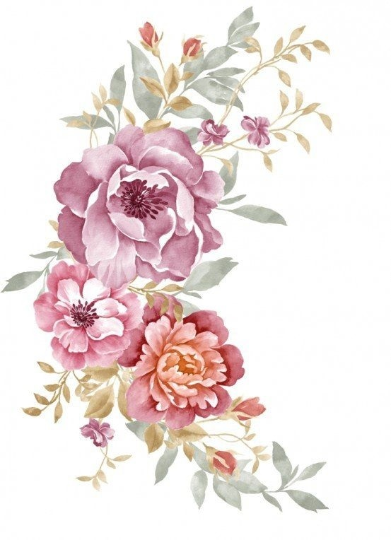живопись цветы на белом фоне 006