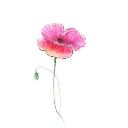 живопись цветы на белом фоне 018