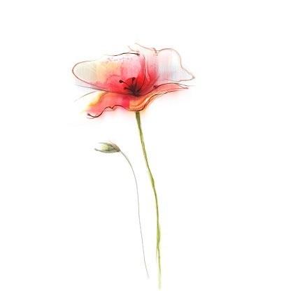 живопись цветы на белом фоне 019