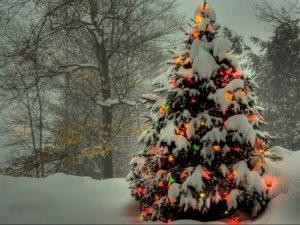 заставки на телефон зима новый год 023