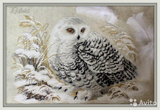 картина совы из шерсти 014