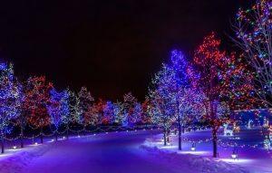 картинки зима на рабочий стол новый год 023