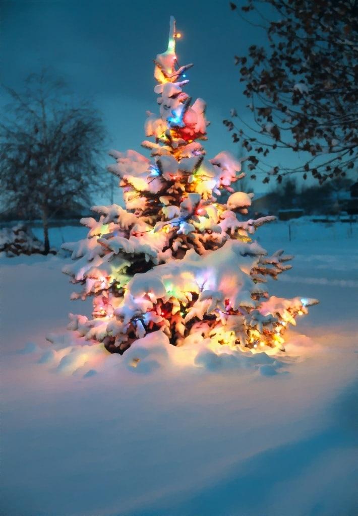 картинки зима новый год на телефон 005