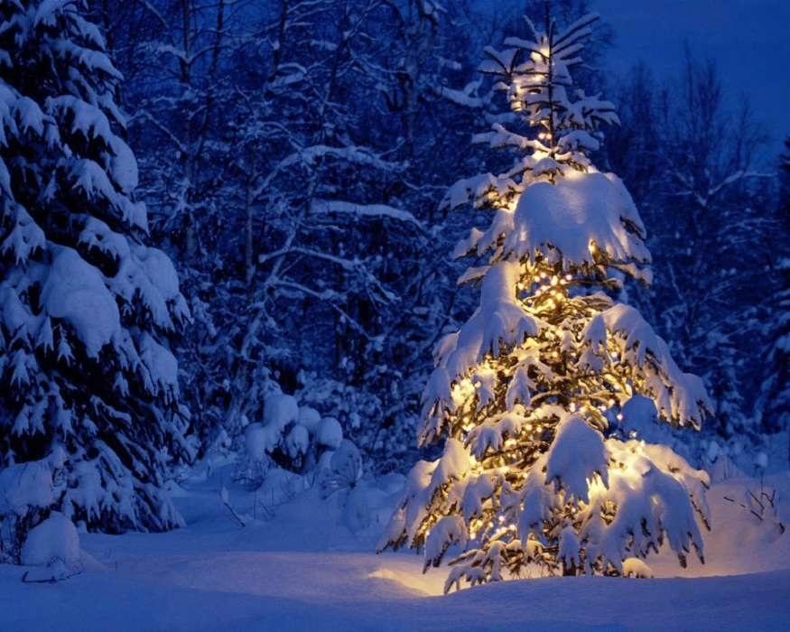 картинки зима новый год на телефон 008