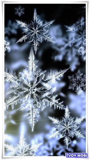 картинки зима новый год на телефон 014