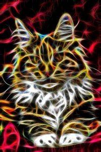 картинки кошки абстракция 022