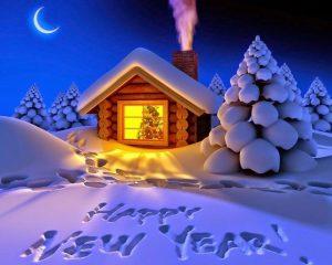 картинки красивые фото новый год 020