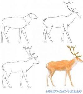 картинки нарисованного оленя 020