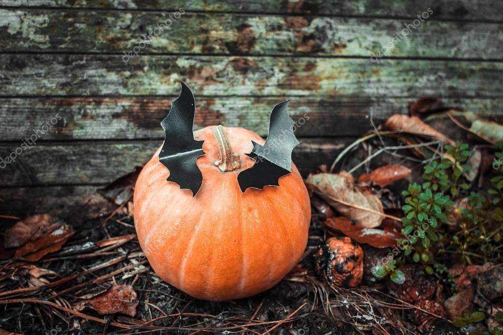 картинки осень хэллоуин 003
