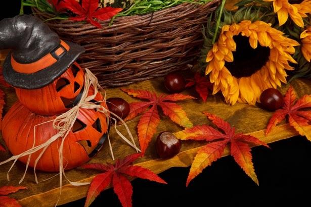 картинки осень хэллоуин 011