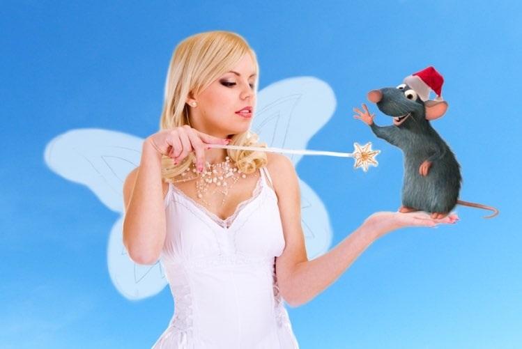 картинки праздника новый год крысы 011
